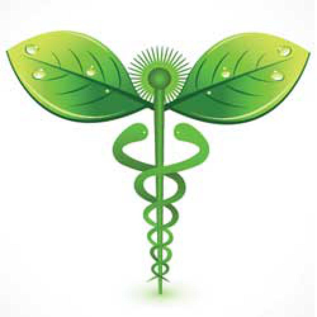 Alternative-Medicine-Schools