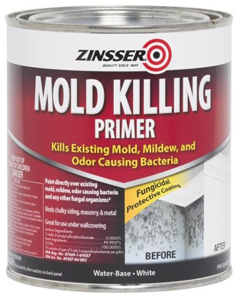 Mold Killing Primer from Rust-Oleum