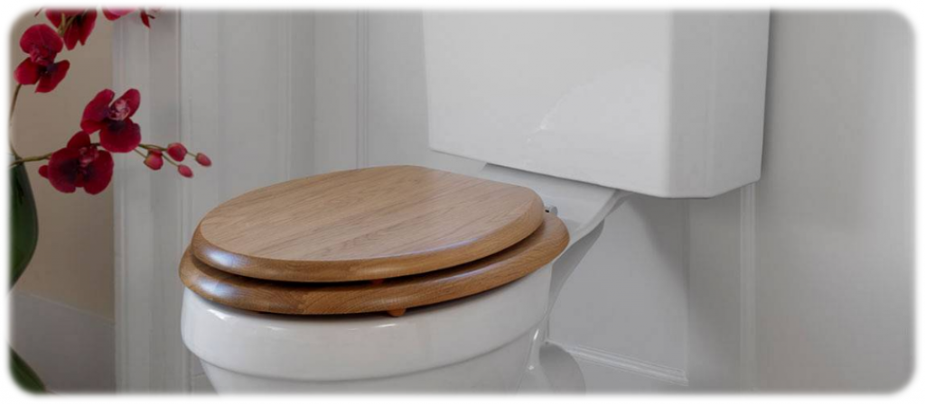 Best Toilet Seat Best Round And Elongated Toilet Seats