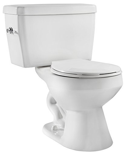 EcoLogic Toilet from Niagara